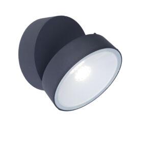 Trumpet kültéri fali lámpa 1 light dark grey
