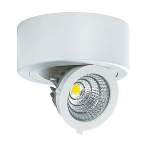 STRÜHM - IGOR LED C 9W Fehér 4000K forgatható mennyezeti spot lámpa