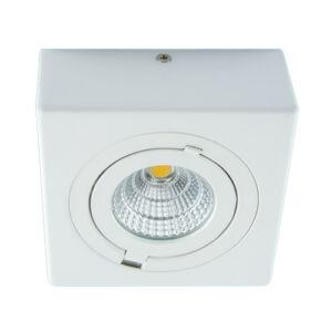 STRÜHM - IGOR LED D 9W Fehér 4000K - forgatható spot