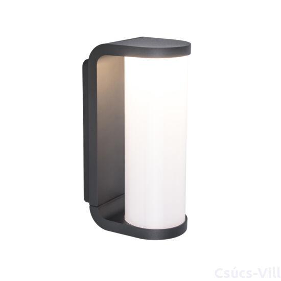 Adalyn kültéri LED fali lámpa 1 light - dark grey